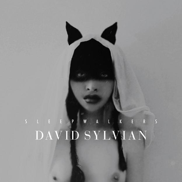 David Sylvian 1