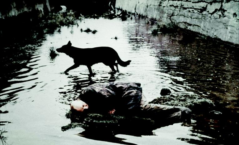 Andrei tarkovsky life through a mirror flux magazine for Miroir tarkovski