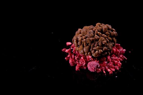 Molecular Gastonomy - Heston Blumenthal