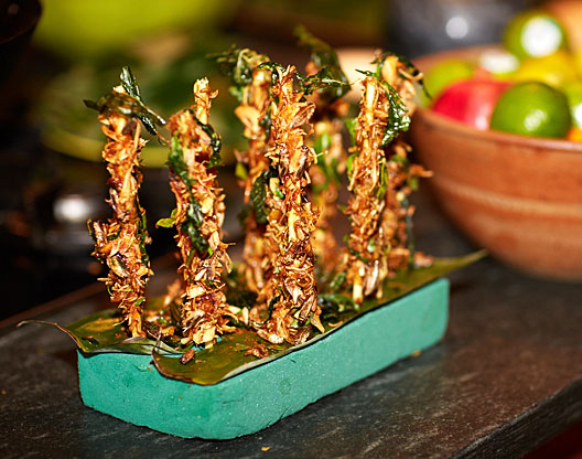 Eat Grubs Edible Insects