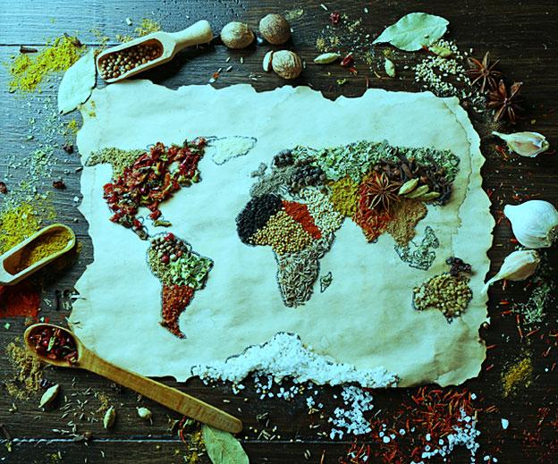 European Food Guide