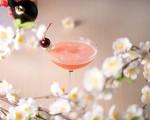 Sakura at Sake No Hana - Chris Zacharia smells the cherry-blossoms