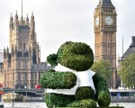 Giant Green Tea Monkey seen floating down the Thames