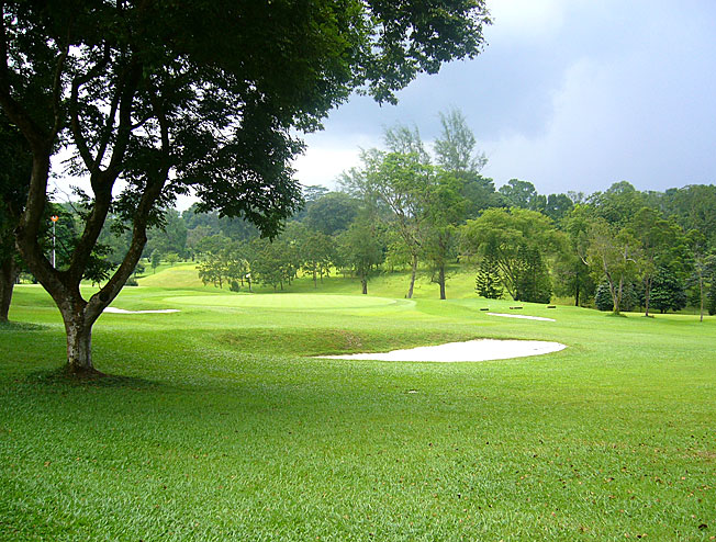 Golf-Web-2