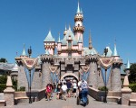 Which Disney Park is the one for you?