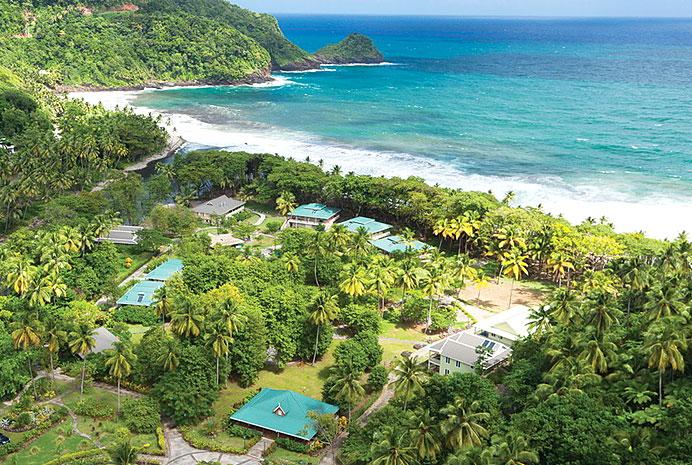 Dominica-Web-3