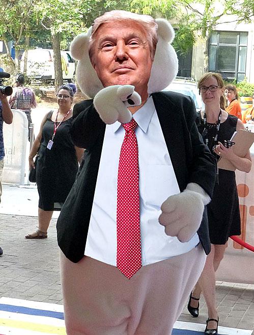 teddy trump