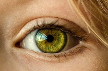 Take Care of Your Eyesight
