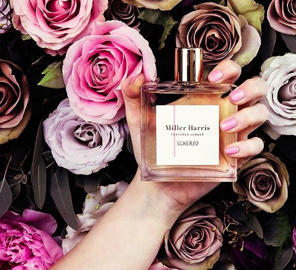 choose a new perfume
