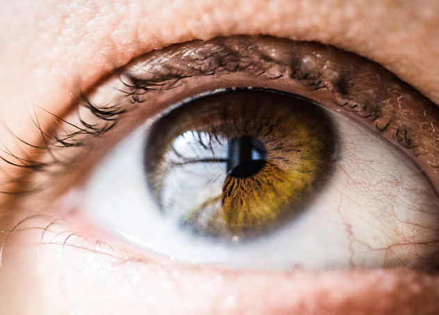 Looking after your eyesight