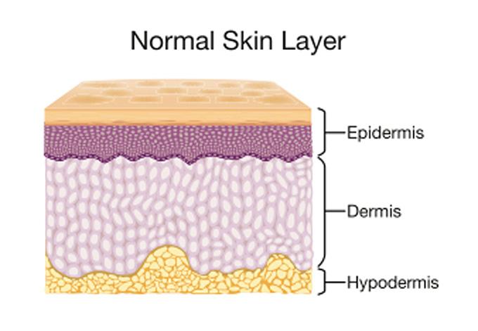 skin care normal skin
