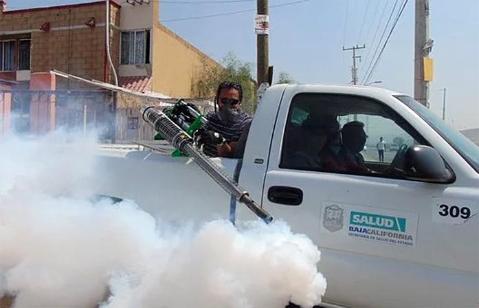 control pests naturally