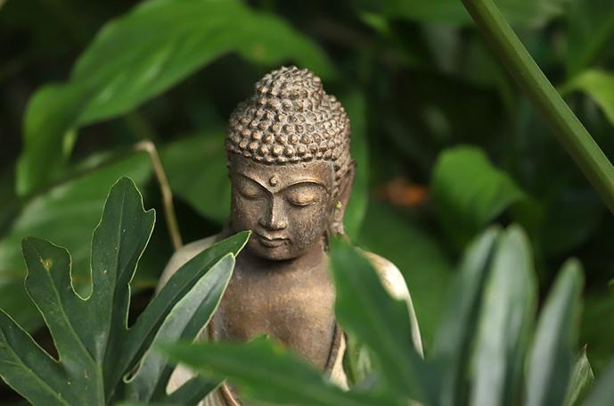 Building a yoga garden