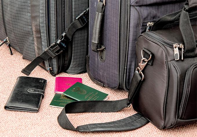 Traveler Bags