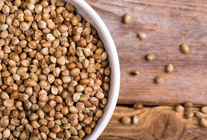 Cannabis Seeds health