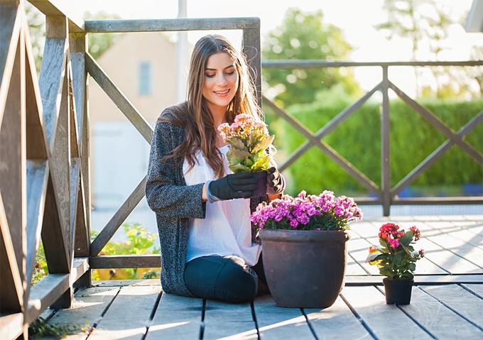 Reinvent garden