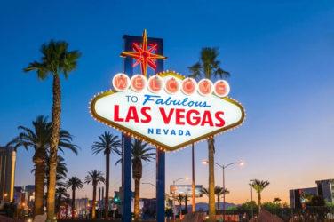 Vegas Visitor